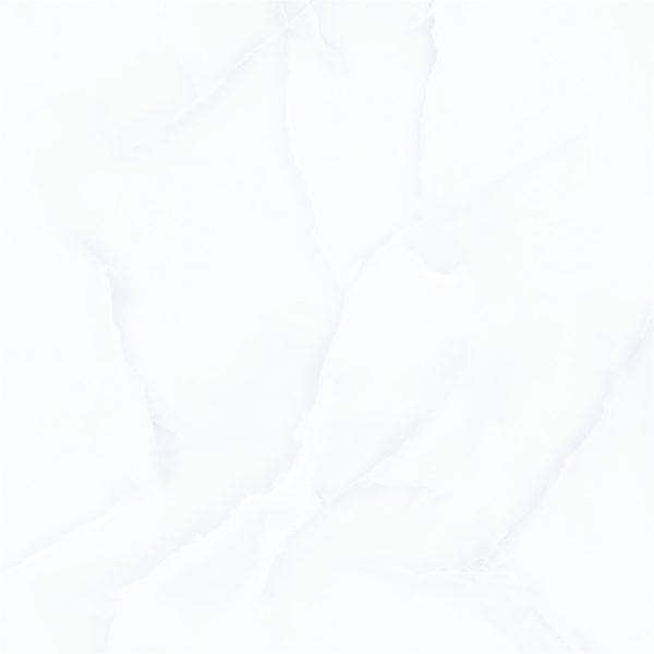 Gạch TTC 60X60 PN66002