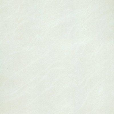 Gạch Taicera 60x60 p67025N