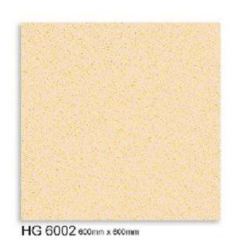 HG6002