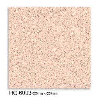 HG6003