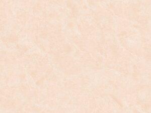 Gạch Viglacera 60x60 M6003
