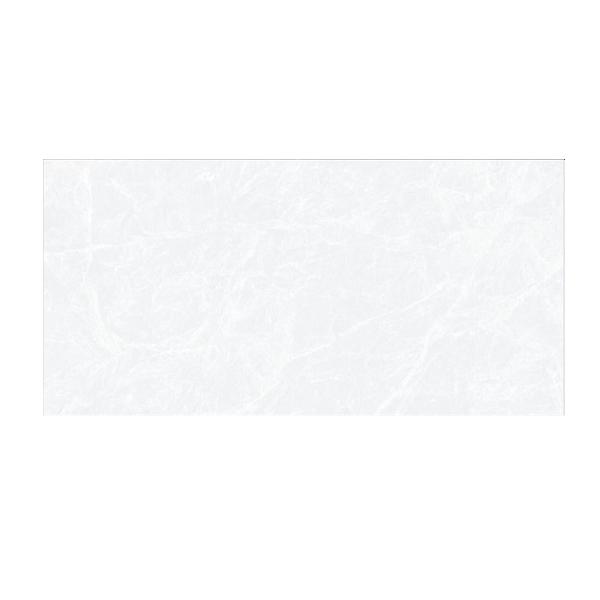 Gach-TTC-WB36077(1)