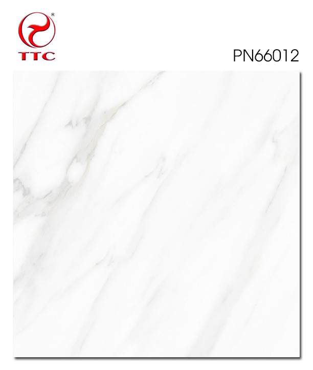 PN66012 - PN66012